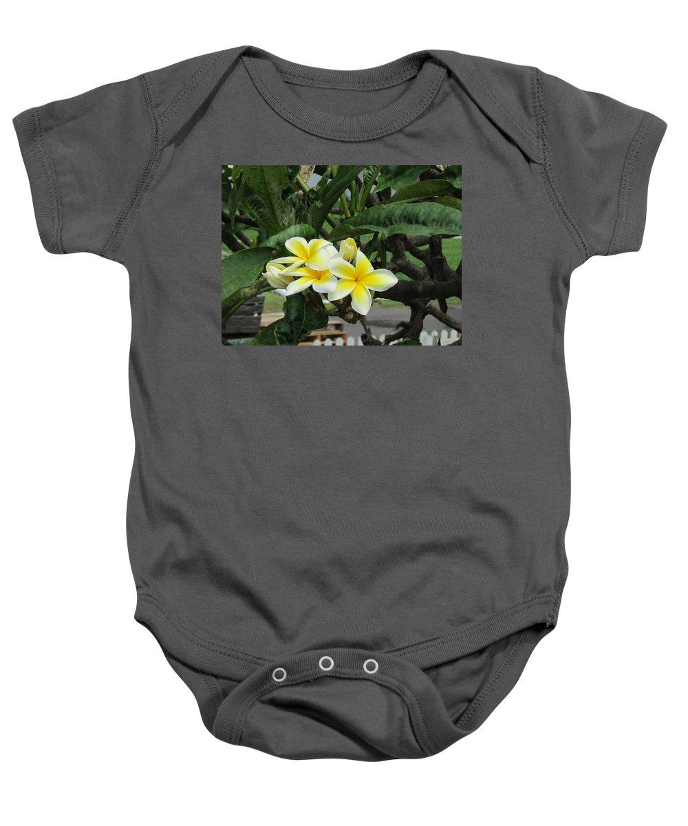 Hawaii Hawaiian Landscape Plumeria Flowers Baby Onesie featuring the photograph Plumeria In Yellow 2 by Huery Talbert