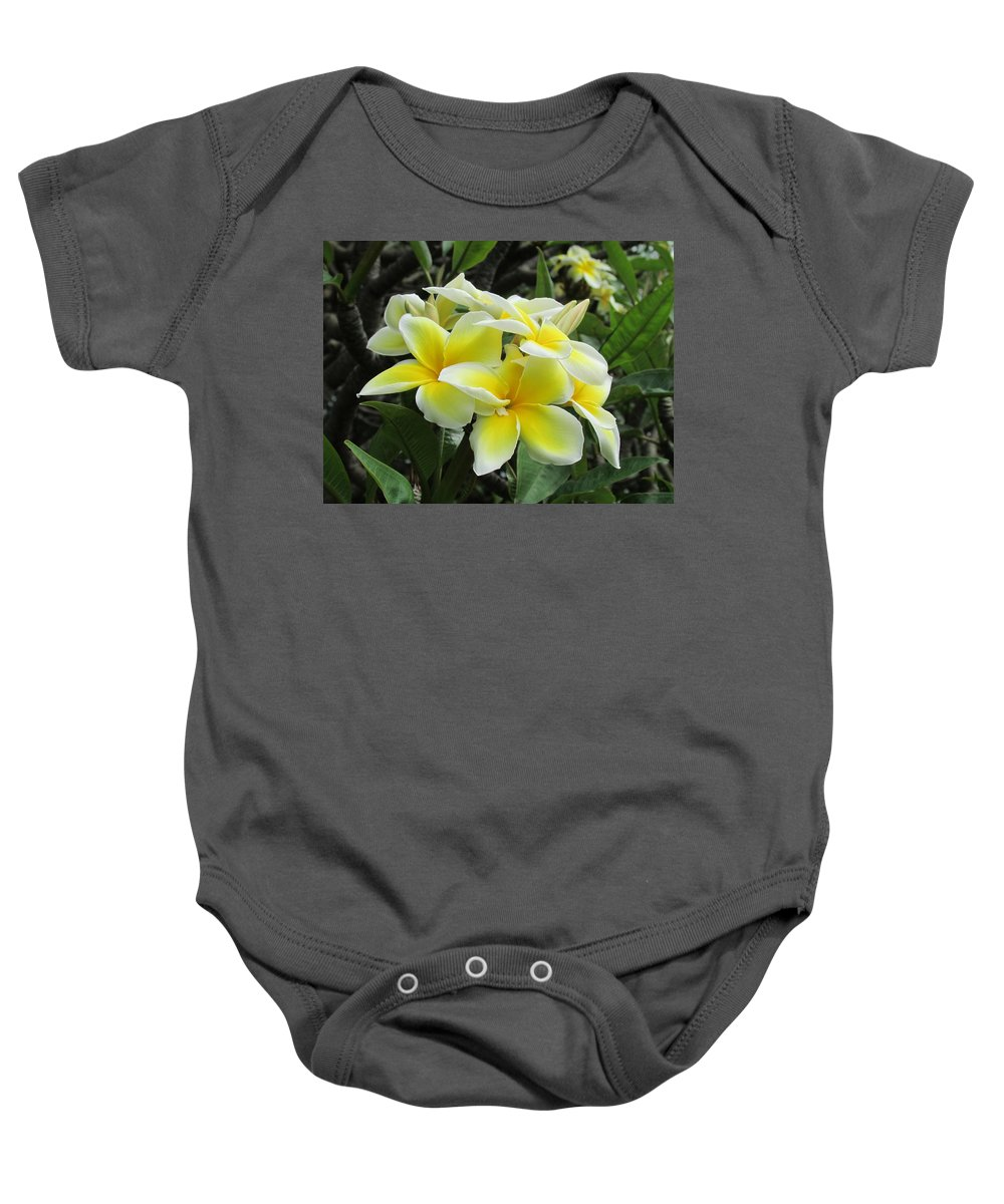 Hawaii Hawaiian Plumeria Flowers Landscape Nature Baby Onesie featuring the photograph Plumeria In Yellow 5 by Huery Talbert