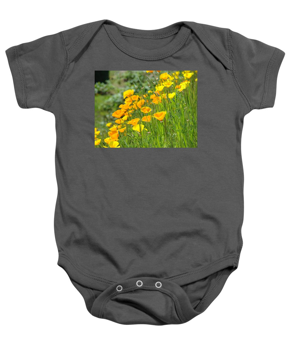�poppies Artwork� Baby Onesie featuring the photograph Poppies Hillside Meadow Landscape 19 Poppy Flowers Art Prints Baslee Troutman by Baslee Troutman