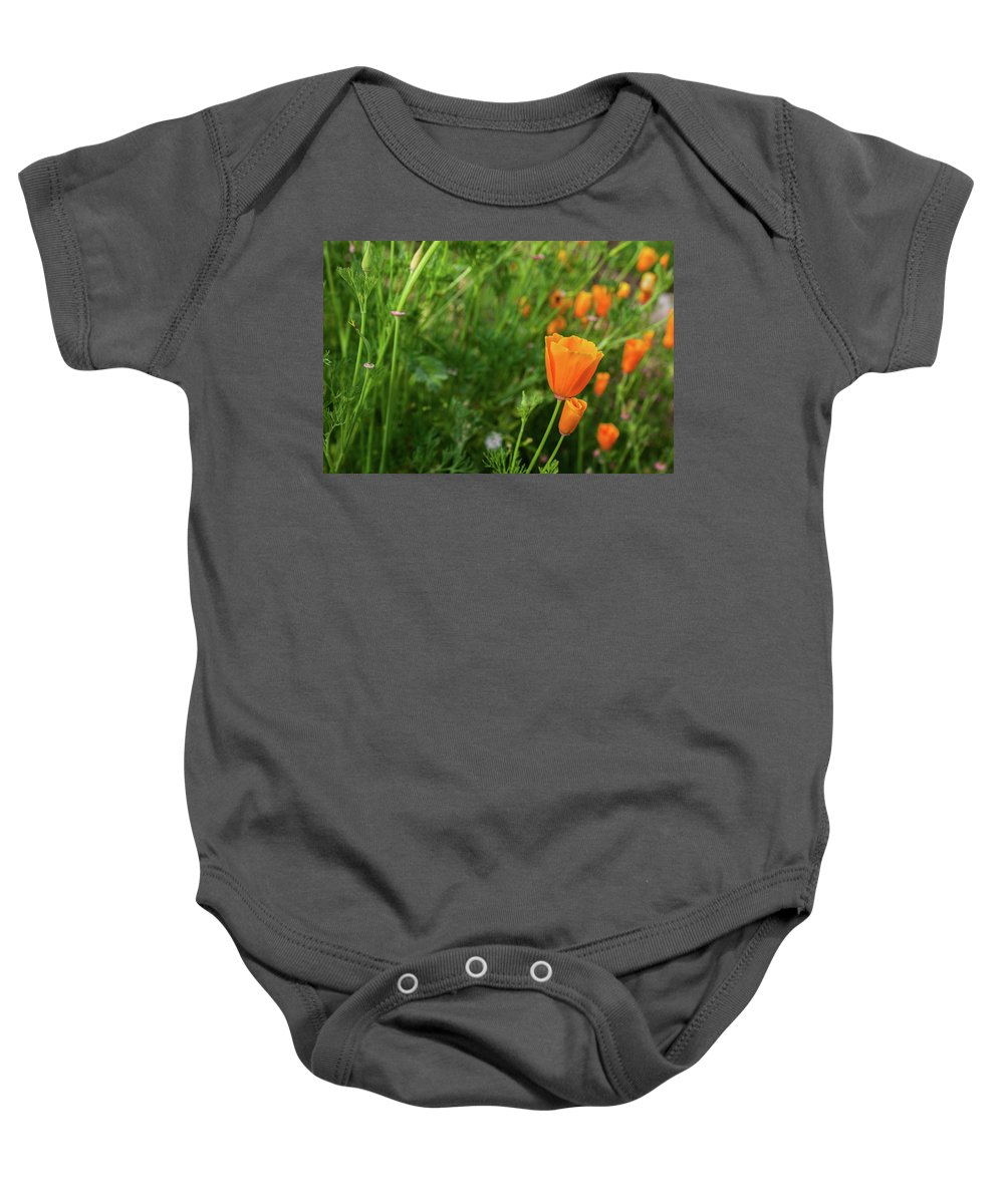 Foothills Baby Onesie featuring the photograph Poppies by Misty Tienken