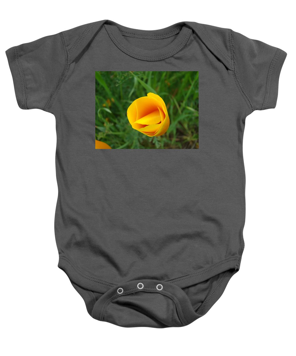�poppies Artwork� Baby Onesie featuring the photograph Poppy Flower Bud 9 Orange Poppies Green Meadow Art Prints Baslee Troutman by Baslee Troutman