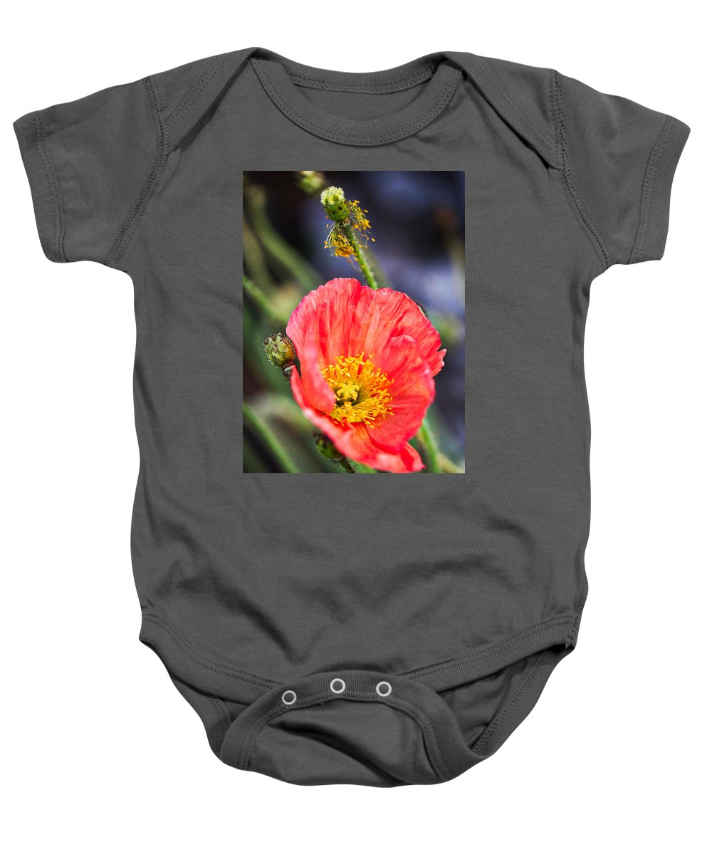 Agriculture Baby Onesie featuring the photograph Poppy Flower by Fornalczyk Aleksandra