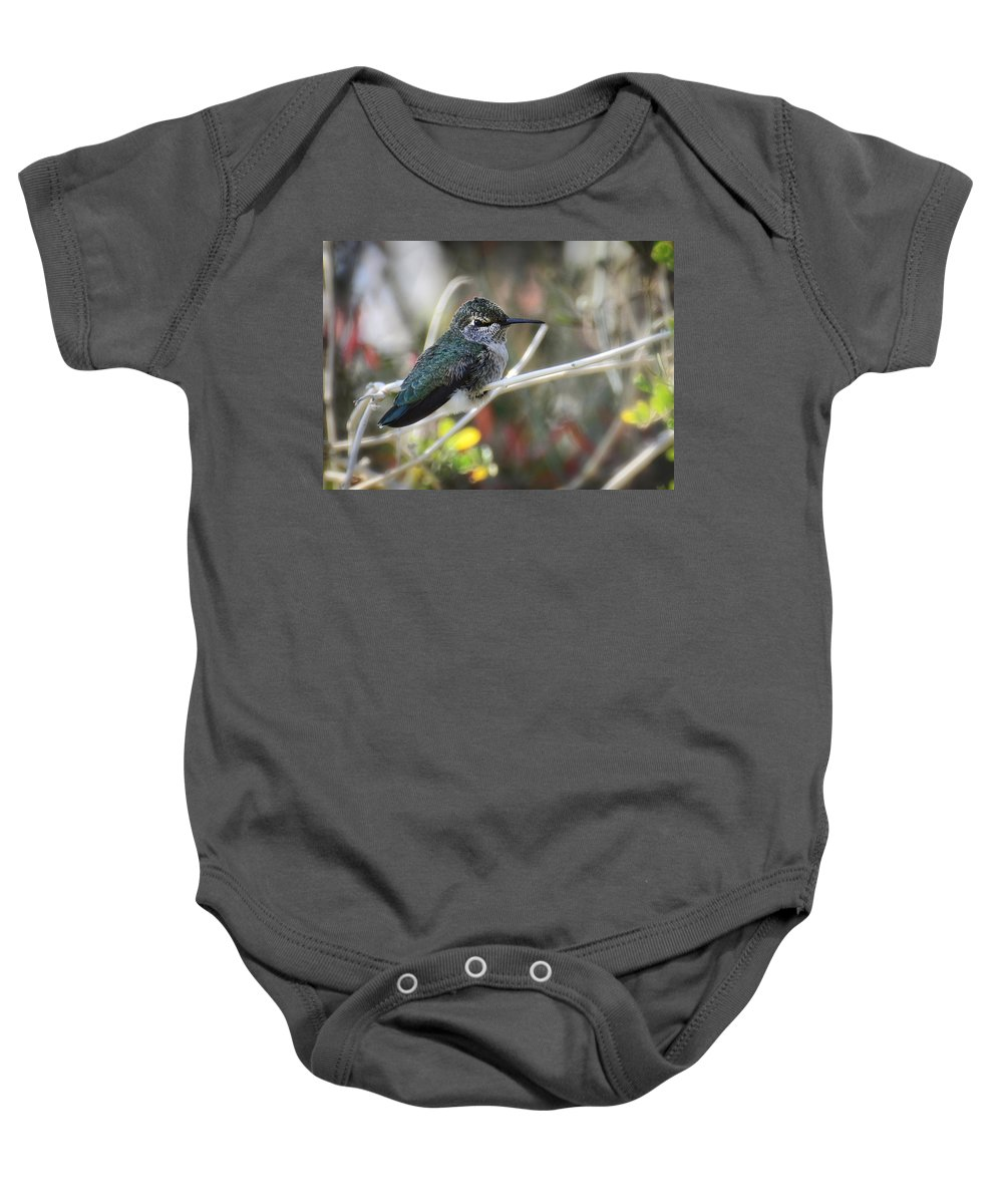 Anna's Hummingbird Baby Onesie featuring the photograph Precious Things by Saija Lehtonen