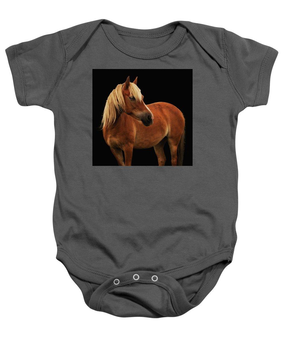 Palomino Ponies Baby Onesie featuring the photograph Pretty Palomino Pony by Habile Photography
