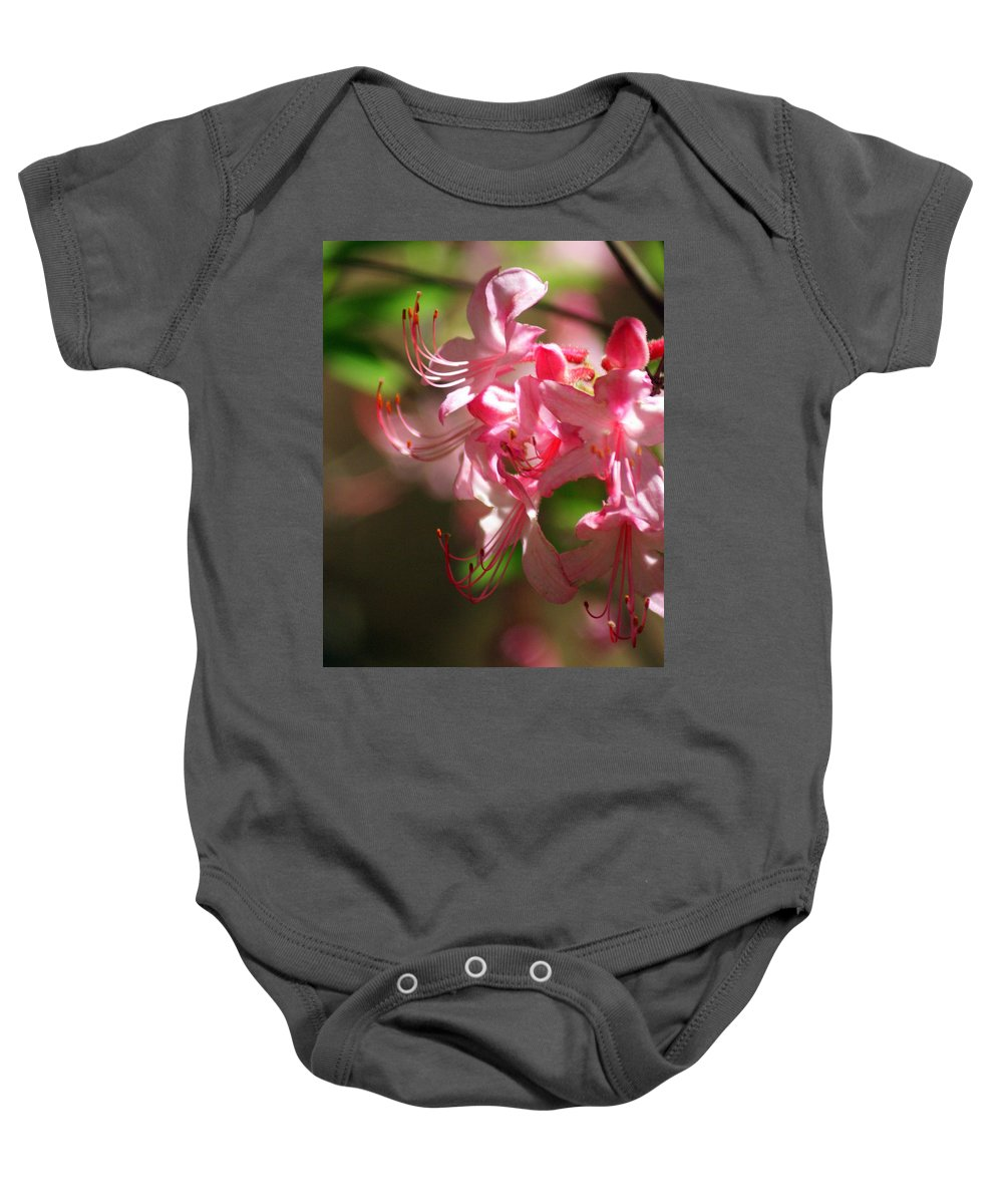 Flowers Baby Onesie featuring the photograph Pretty Pink by Marty Koch