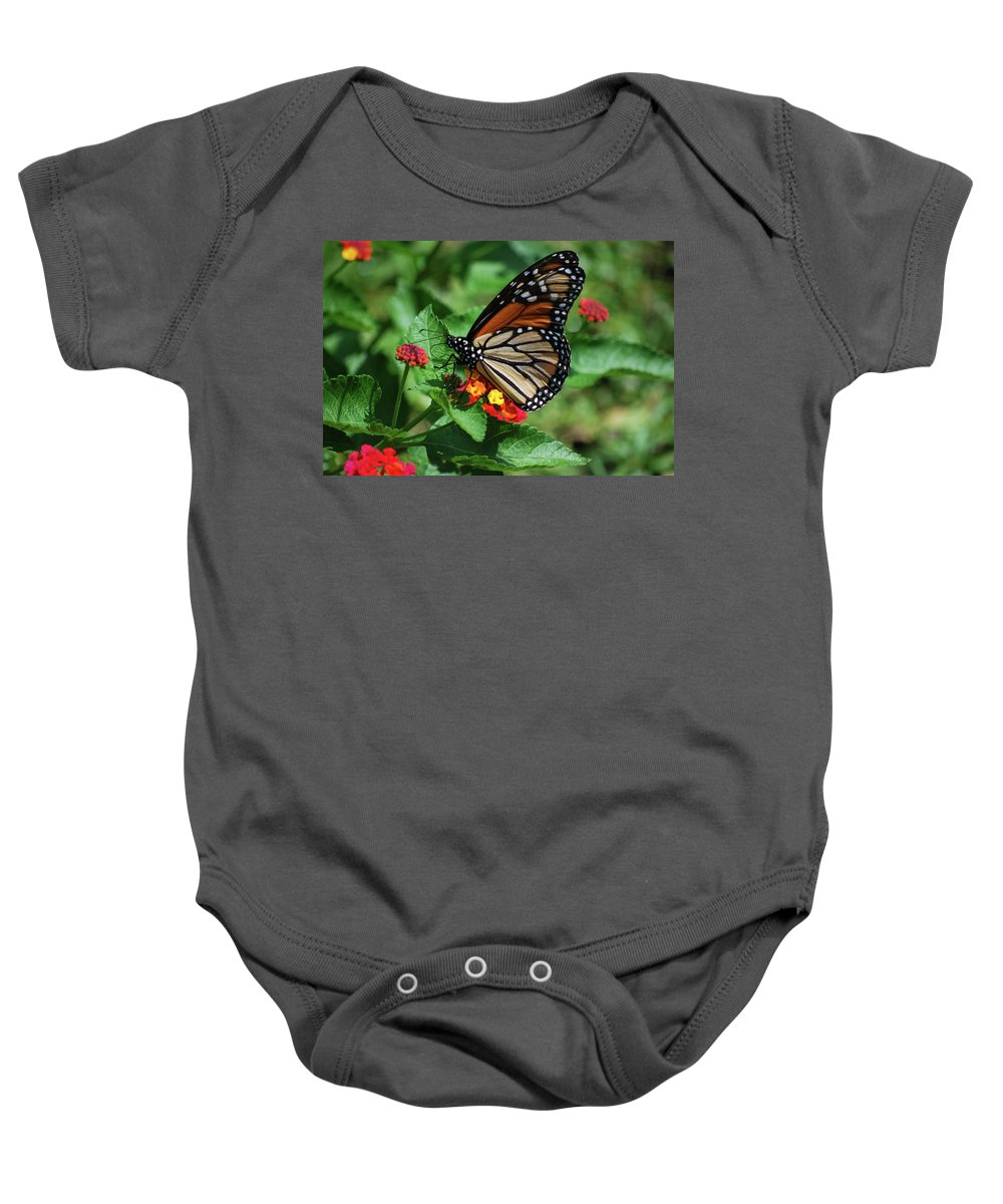 Monarch Baby Onesie featuring the photograph Pretty Spots by Lori Tambakis