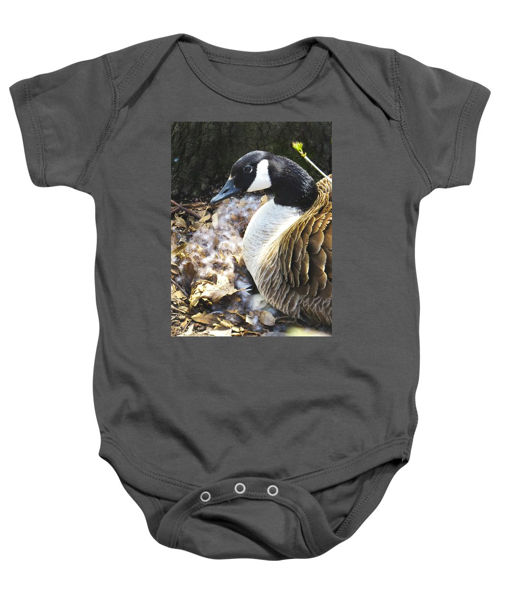 Goose Baby Onesie featuring the photograph Protective Mother by Craig Bohnert