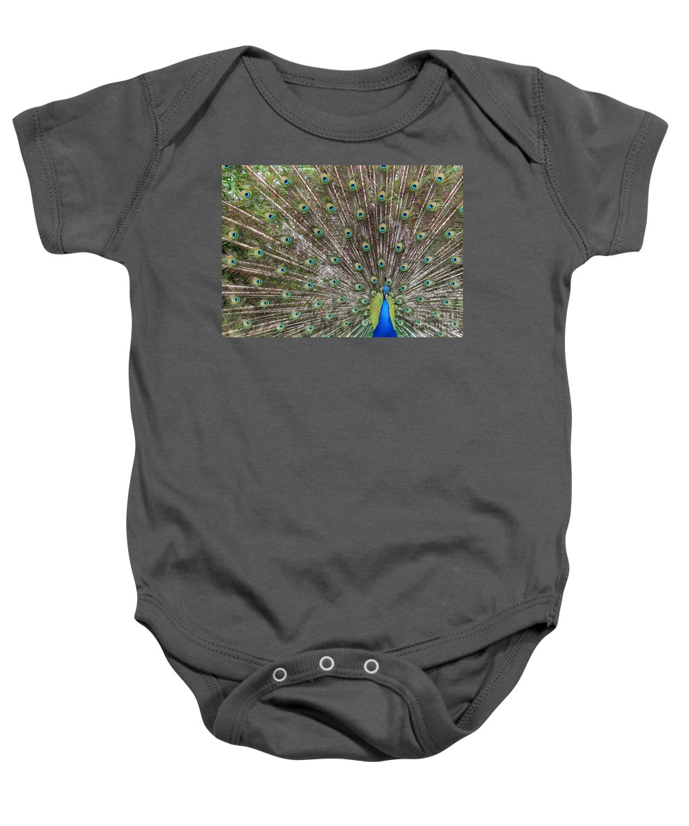 Peacock Baby Onesie featuring the photograph Proud Peacock by Sabrina L Ryan
