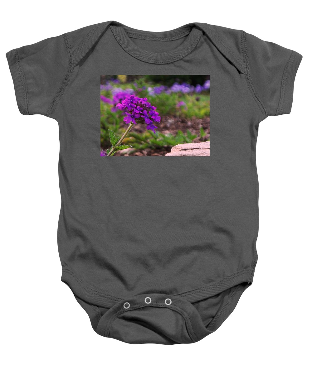 Purple Baby Onesie featuring the painting Purple Flower by Eric Schiabor
