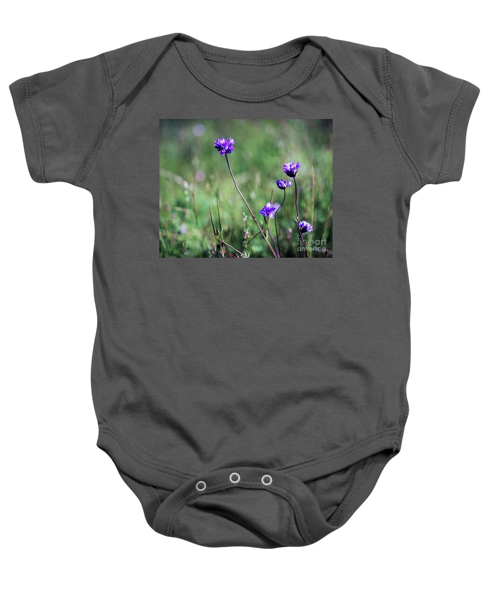 Purple Baby Onesie featuring the photograph Purple Flowers by Jim And Emily Bush