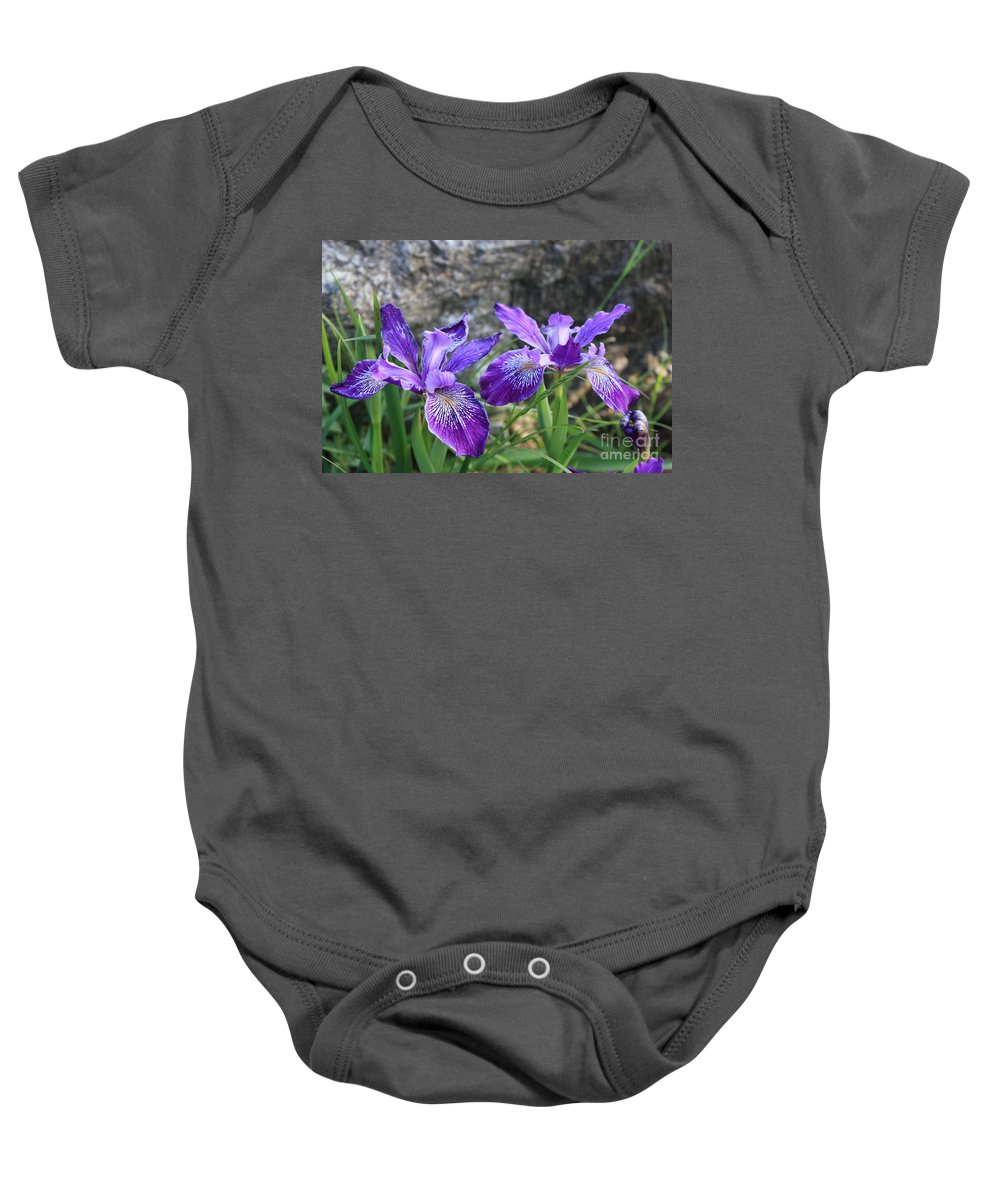 Purple Baby Onesie featuring the photograph Purple Irises With Gray Rock by Carol Groenen