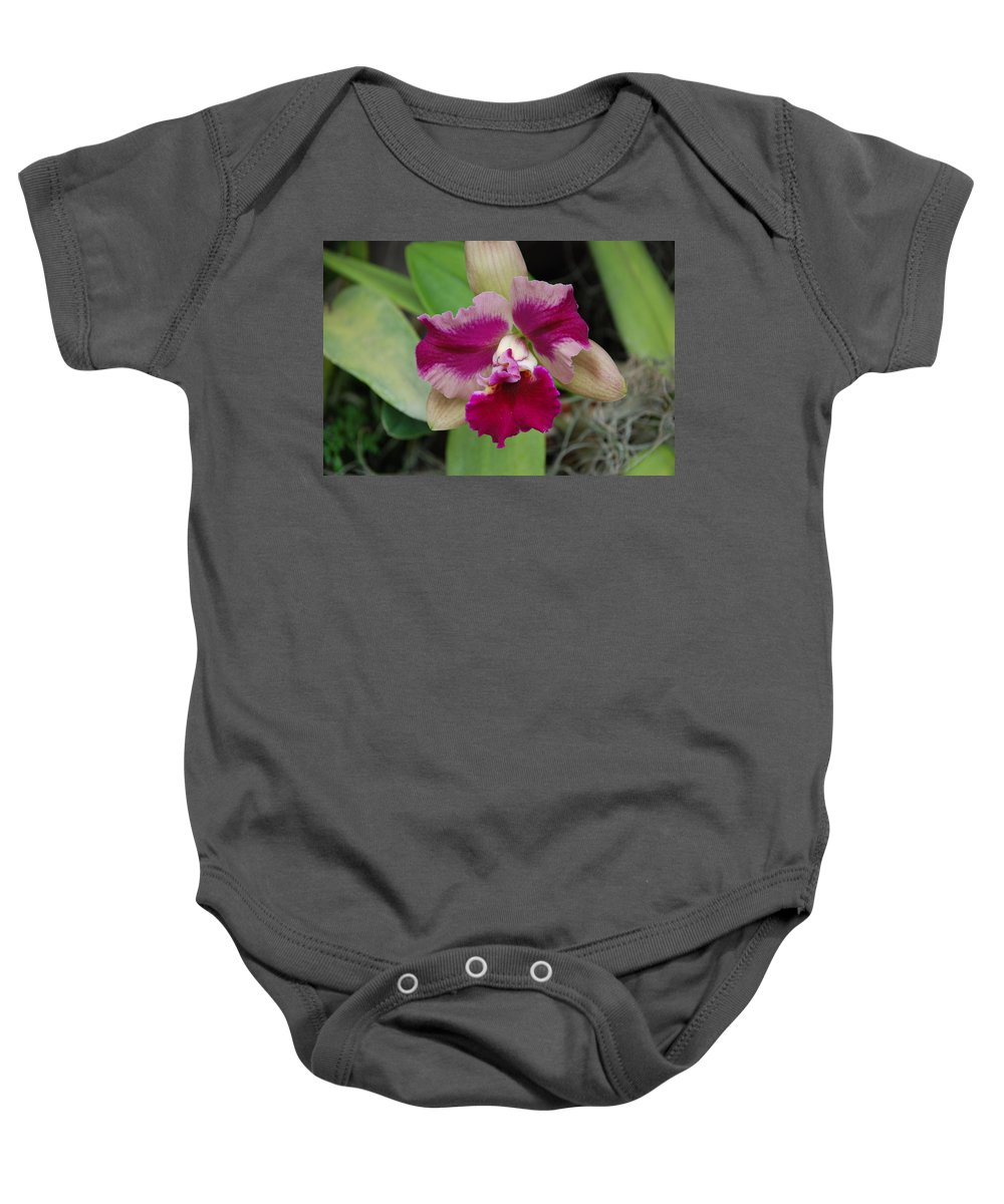 Macro Baby Onesie featuring the photograph Purple Orchid by Rob Hans
