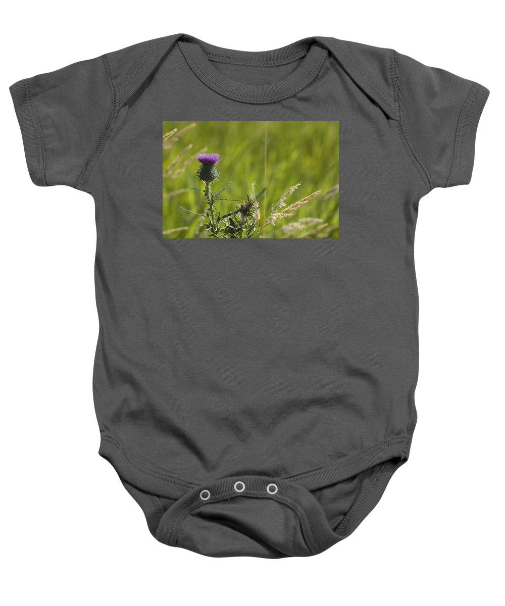 Thistle Baby Onesie featuring the photograph Purple Thistle by Sara Stevenson
