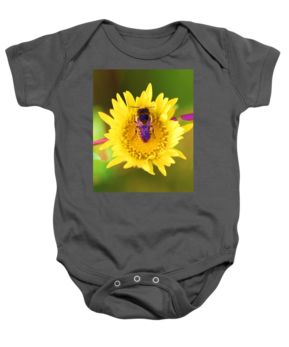 Bees With Purple Wings Baby Onesie featuring the photograph Purple Wings by John King