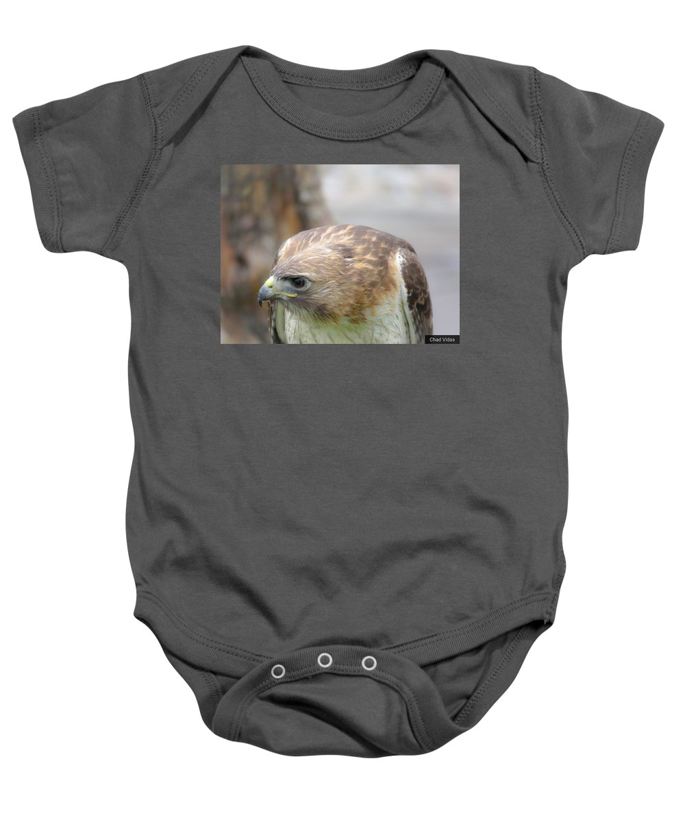 Red-tail Hawk Baby Onesie featuring the photograph Rabbit Hunting by Chad Vidas