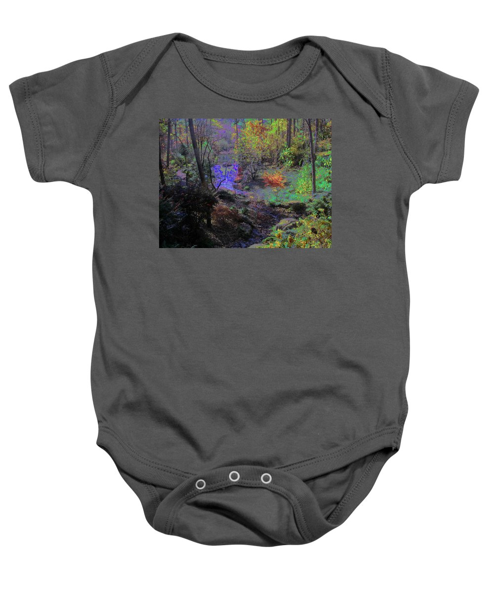 Woods Baby Onesie featuring the photograph Rainbow Fairies Sweep Across The Landscape by Anne Cameron Cutri