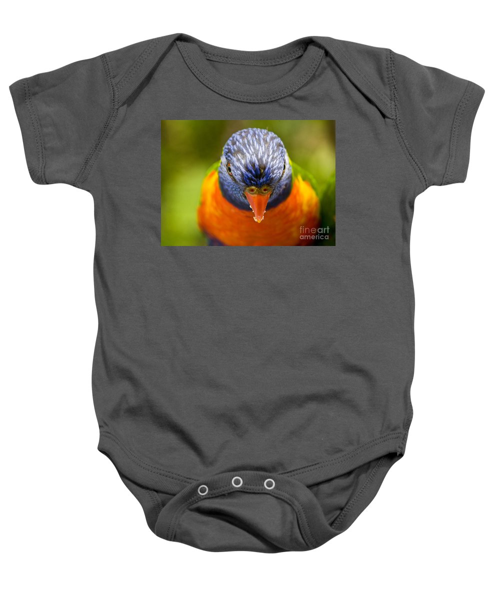 Rainbow Lorikeet Baby Onesie featuring the photograph Rainbow Lorikeet by Sheila Smart Fine Art Photography