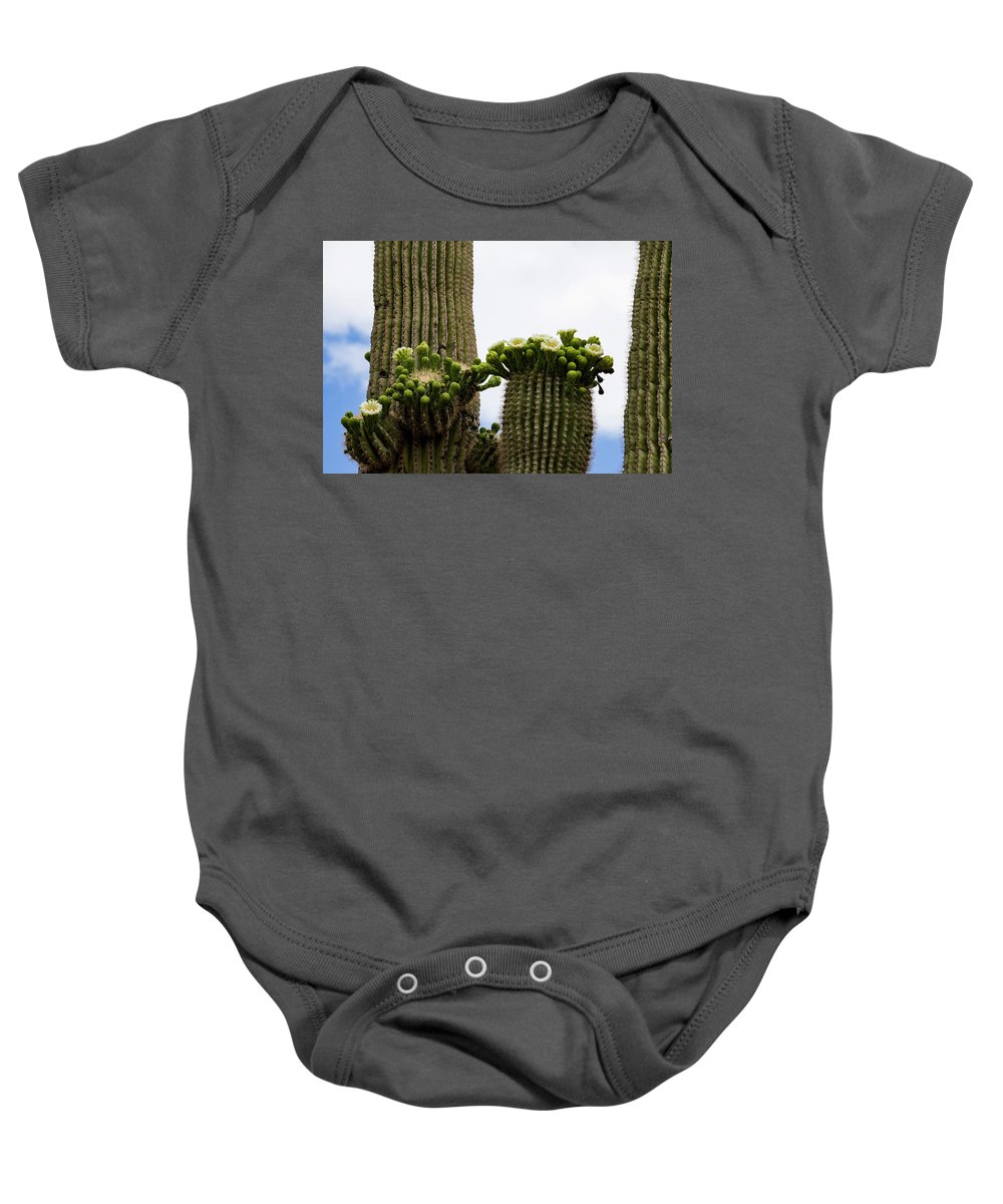 Arizona Baby Onesie featuring the photograph Ready To Open by Cathy Franklin