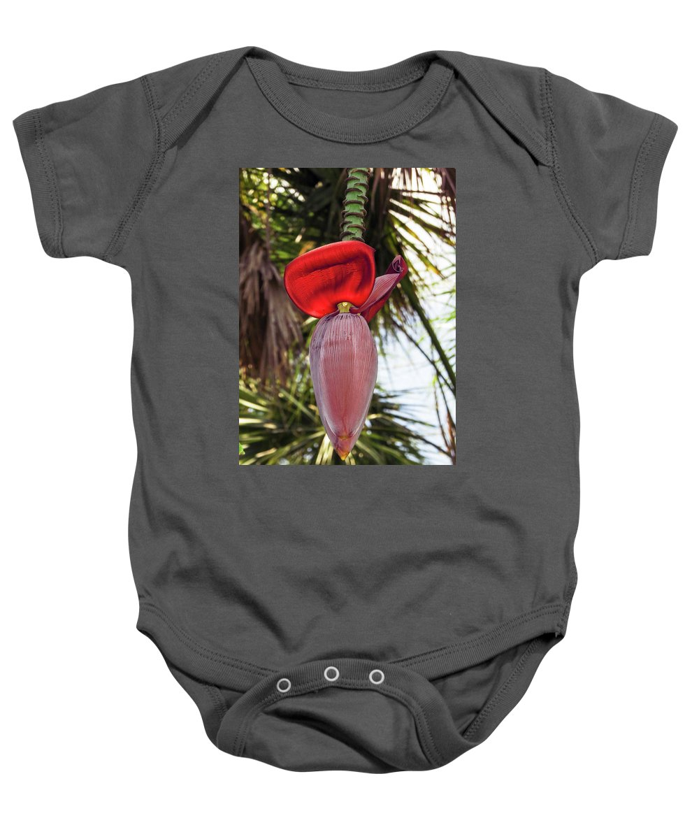 Nature Baby Onesie featuring the photograph Red Banana Blossom by WanderBird Photographi