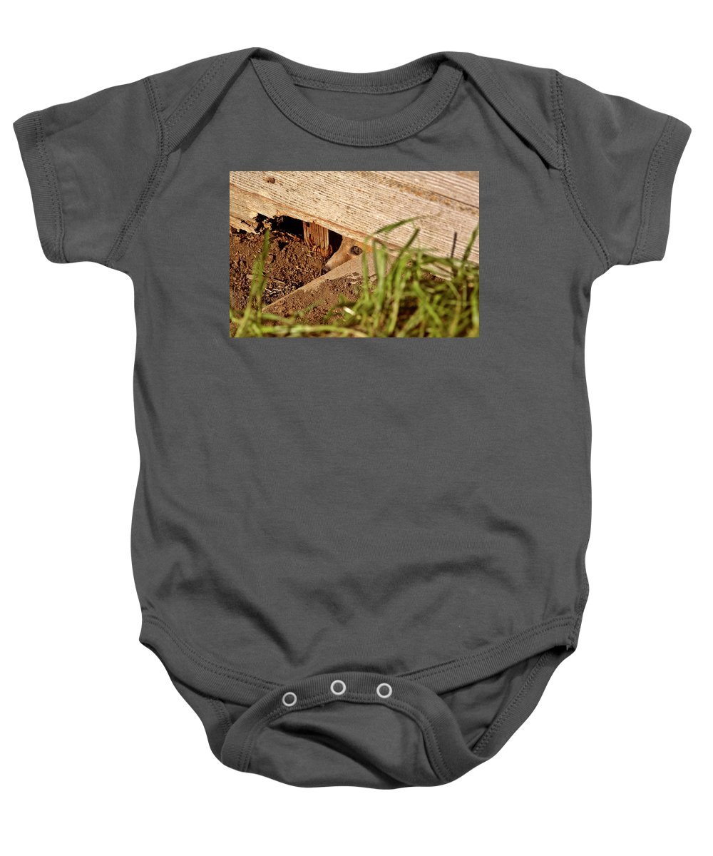 Red Fox Baby Onesie featuring the digital art Red Fox Kit Peaking Out From Den Under Old Granary by Mark Duffy