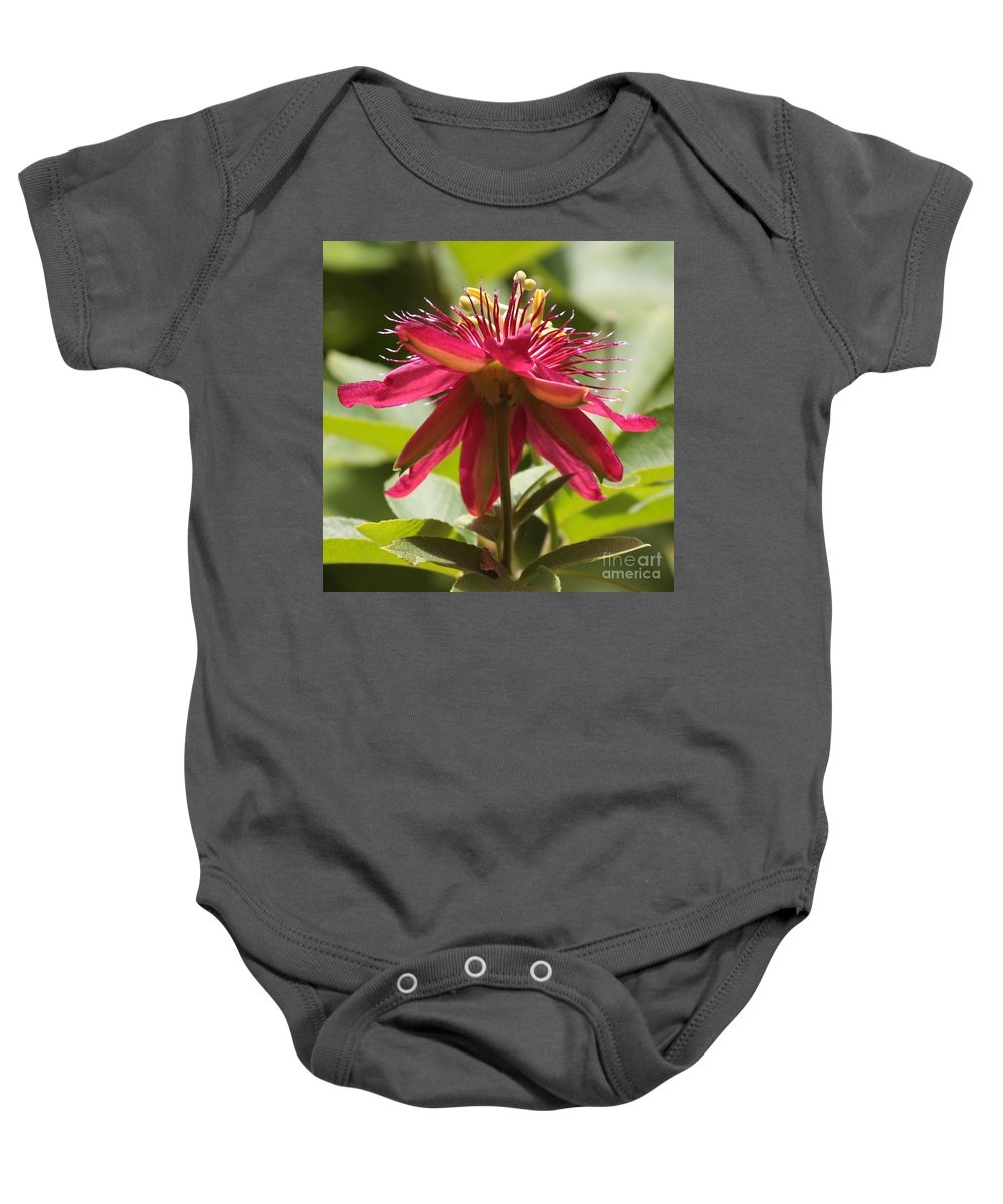 Passion Flower Baby Onesie featuring the photograph Red Passion Flower by Carol Groenen