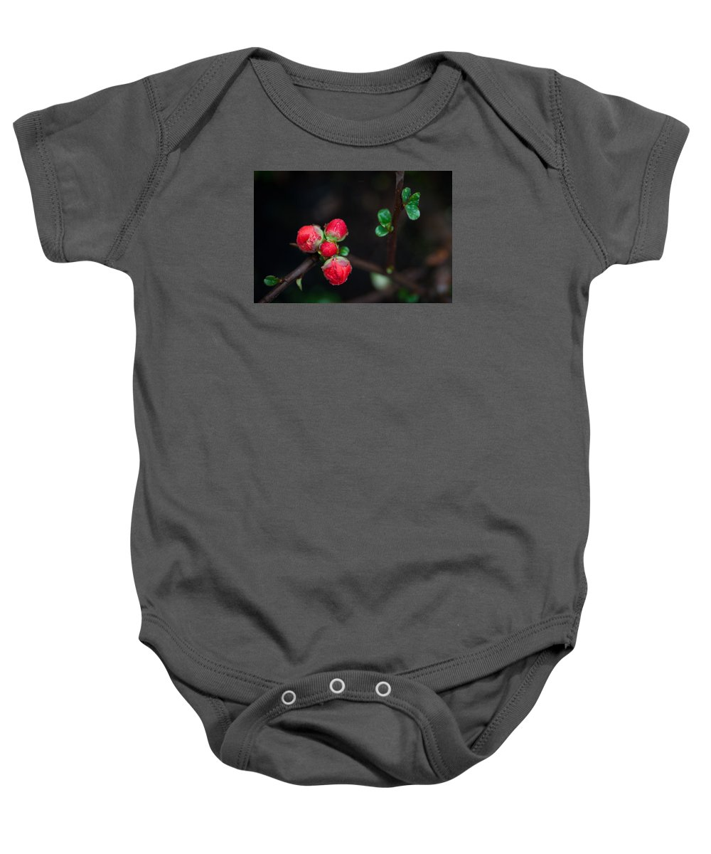 Red Baby Onesie featuring the photograph Red Plum Flowers In Rain by Catherine Lau
