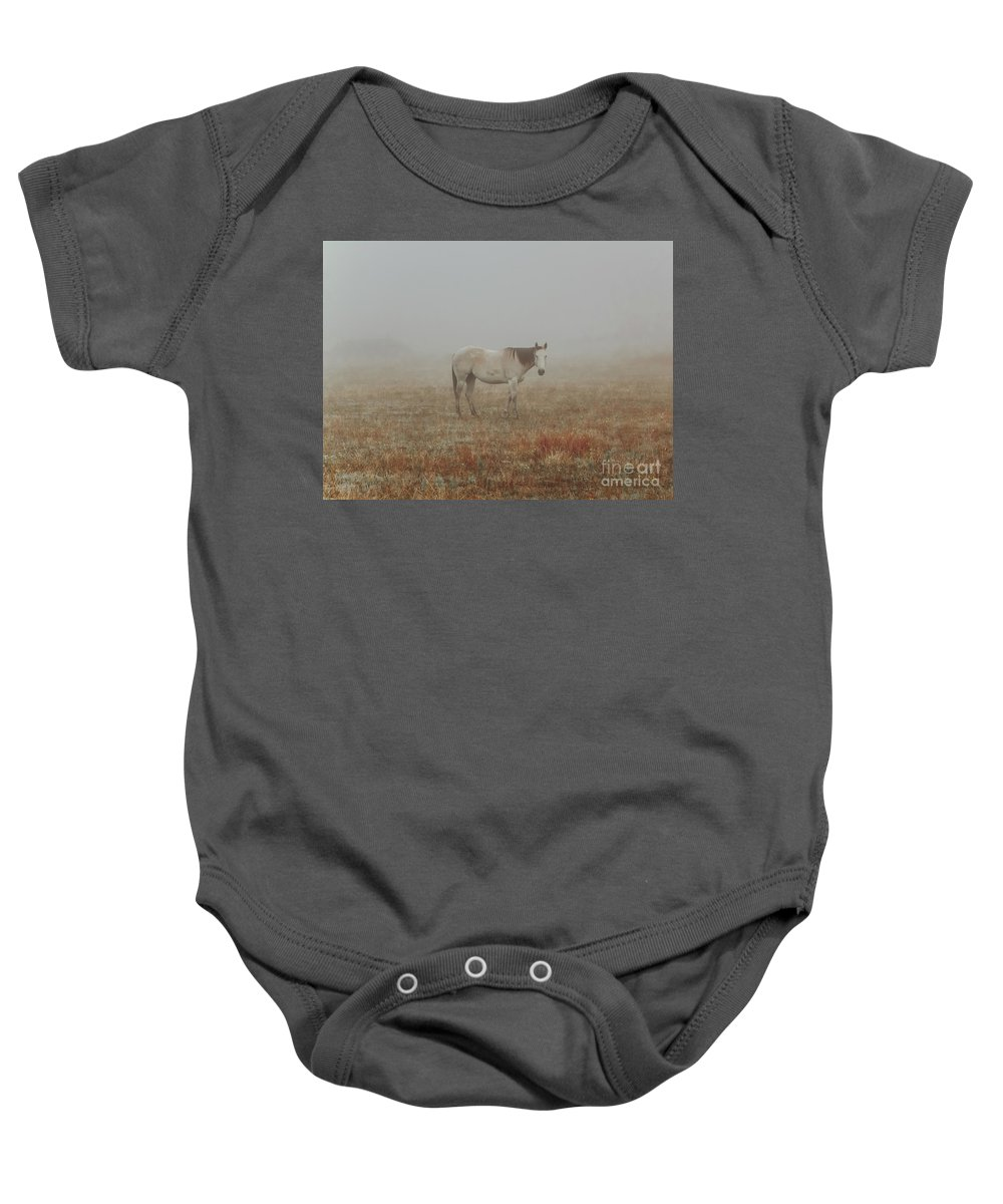 Horse Baby Onesie featuring the photograph Red Roan In Mist by Robert Frederick