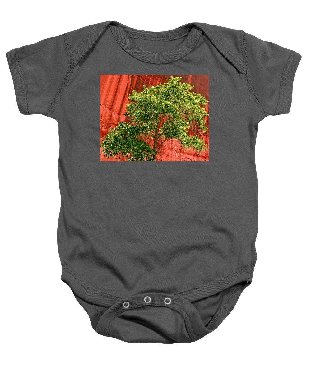 Tree Baby Onesie featuring the photograph Red Rock Green Tree by Joe Kozlowski