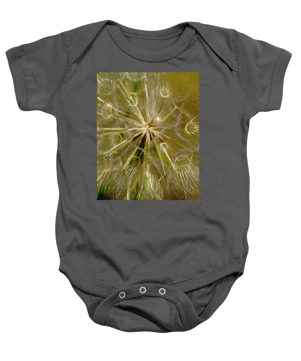 Flowers Baby Onesie featuring the photograph Reflecting The Golden Sunshine Of Love by Ben Upham III