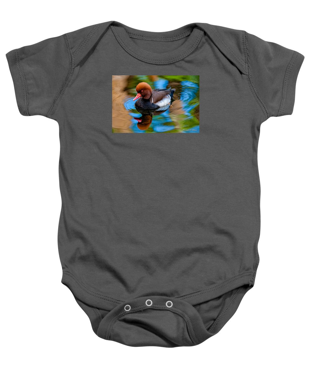 Red-crested Pochard Baby Onesies