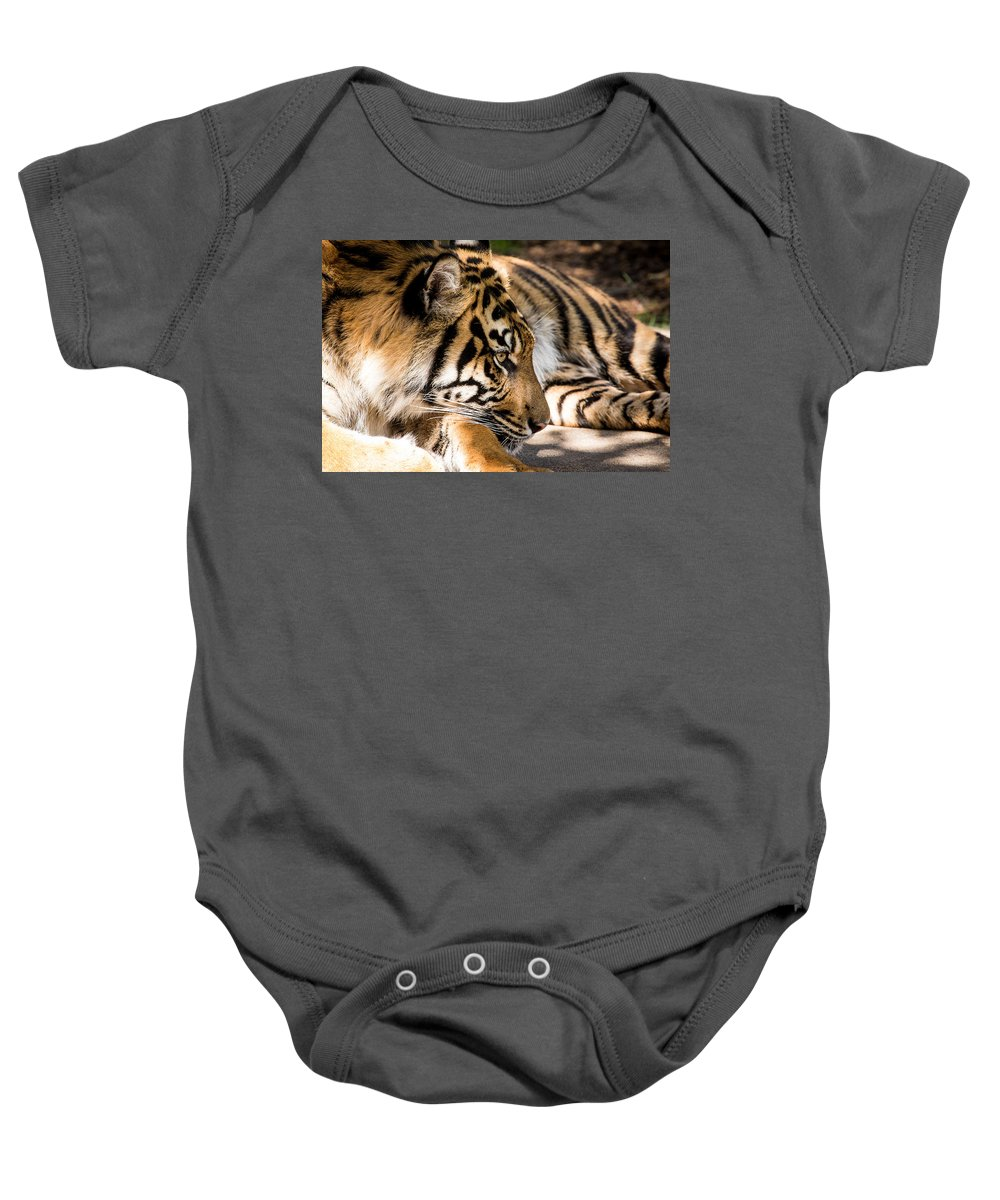 Sumatran Tiger Baby Onesie featuring the photograph Resting Yet Watchful Tiger by Brent Martin - My Photography Adventure