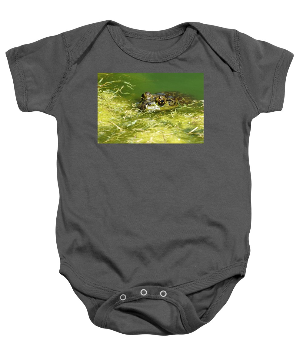 Frog Baby Onesie featuring the photograph Ribbit by Jill Reger