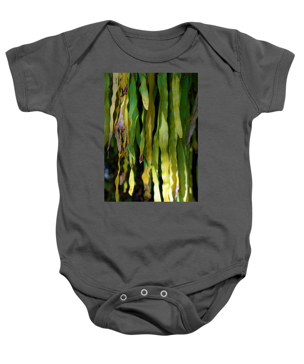 Baby Onesie featuring the photograph Ribbons Of Green by Wayne Wilkinson