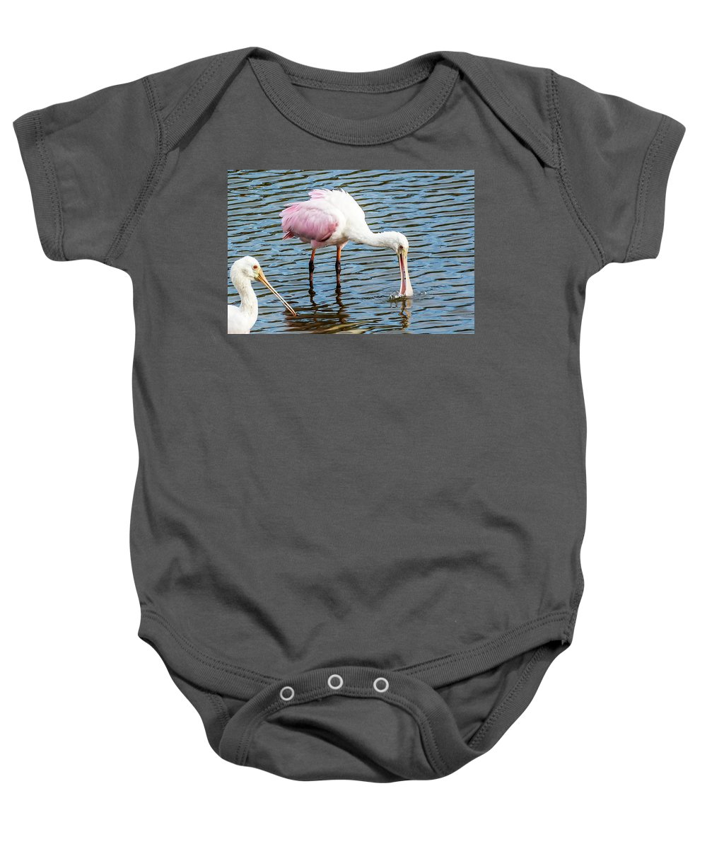 Celery Fields Baby Onesie featuring the photograph Roseate Spoonbills by Richard Goldman