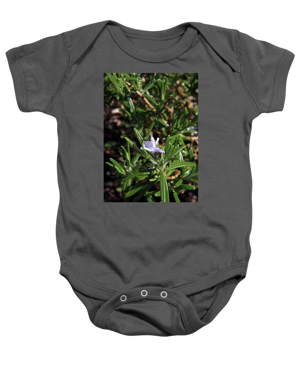 Rosemary Baby Onesie featuring the photograph Rosemary Flower by Aidan Moran