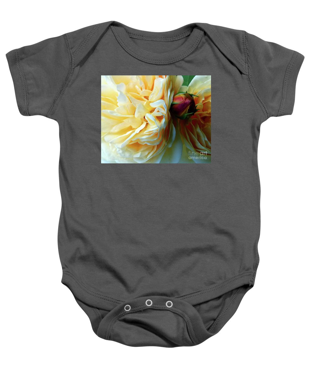 Flower Baby Onesie featuring the painting Roses And Bud by Paula Joy Welter