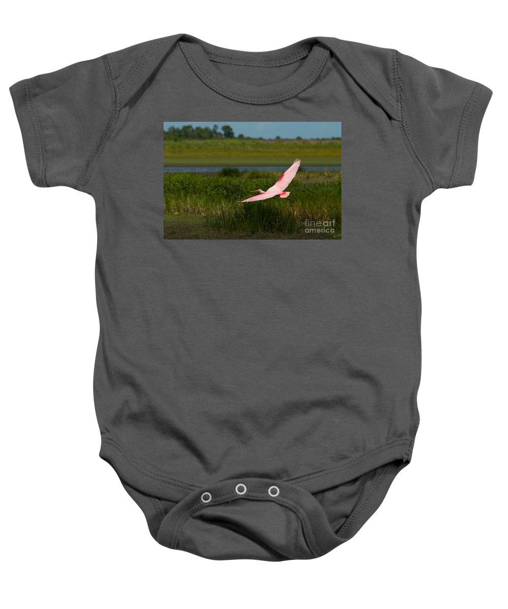 Roseate Baby Onesie featuring the photograph Rosy Soar 61 by Photos By Cassandra
