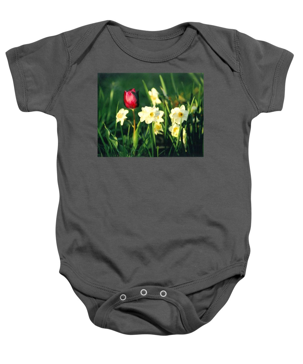 Tulips Baby Onesie featuring the photograph Royal Spring by Steve Karol