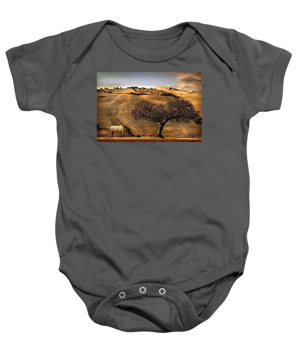 Landscape Baby Onesie featuring the photograph Rural Spain View by Mal Bray