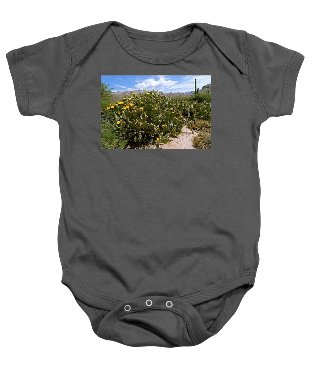 Sabino Canyon Baby Onesie featuring the photograph Sabino Canyon 3 by Larry Ricker