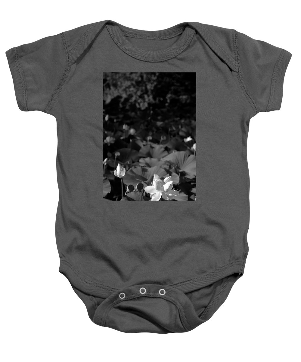 Lily Baby Onesie featuring the photograph Sacred Lotus #2.  Black And White by David Lyons