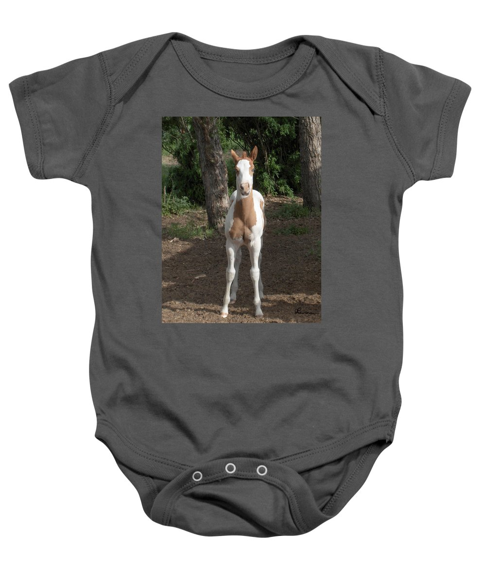 Horse Horses Colt Filly Mare Stallion Foal Ranch Farm Herd Paint Attitude Baby Onesie featuring the photograph Sassy Filly by Andrea Lawrence