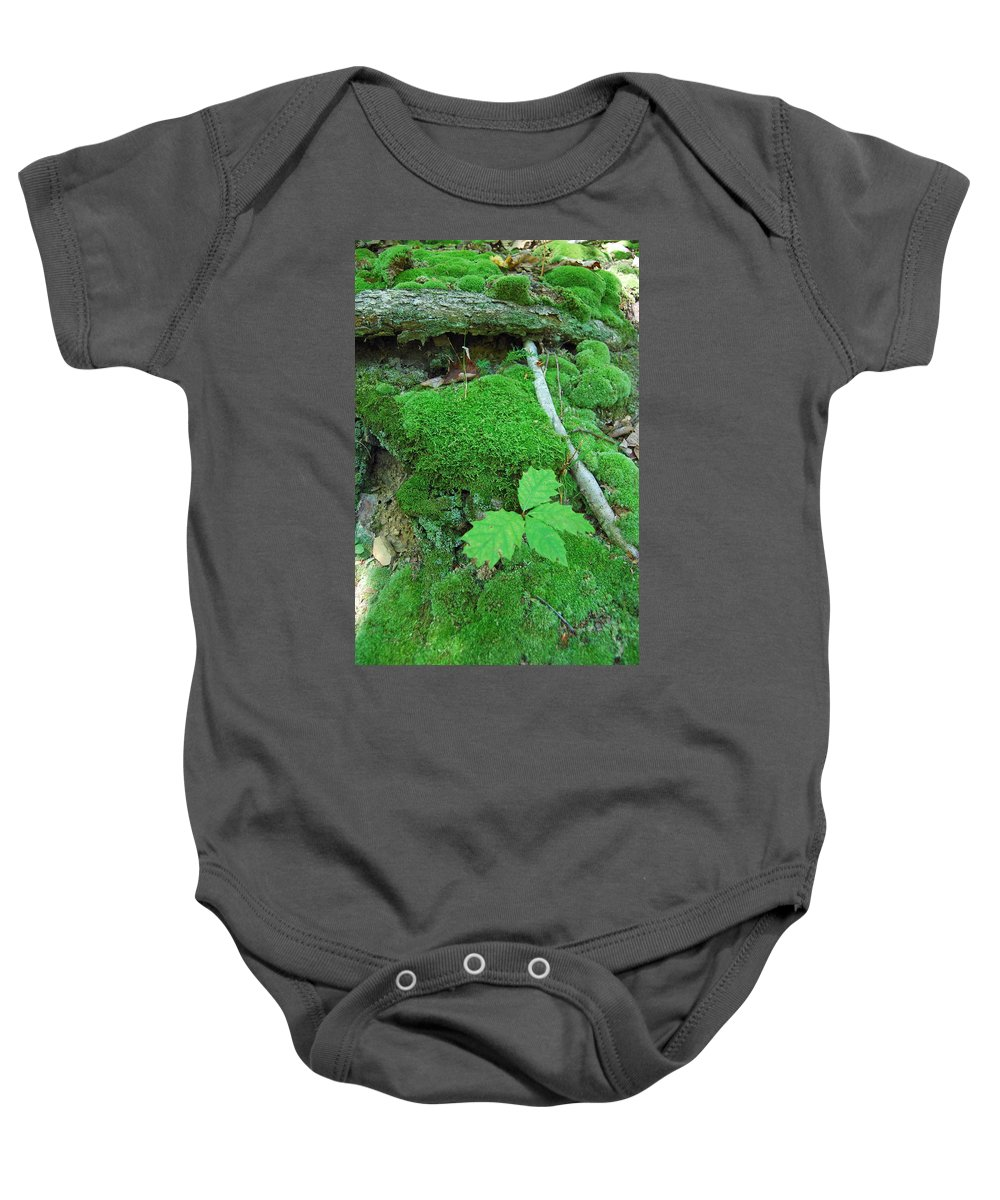 Green Baby Onesie featuring the photograph Sassy Sapling by Trish Hale