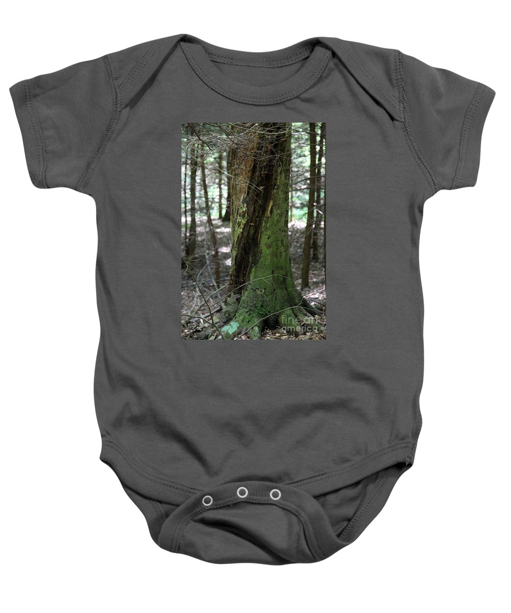 Tree Baby Onesie featuring the photograph Scarred by Amanda Barcon