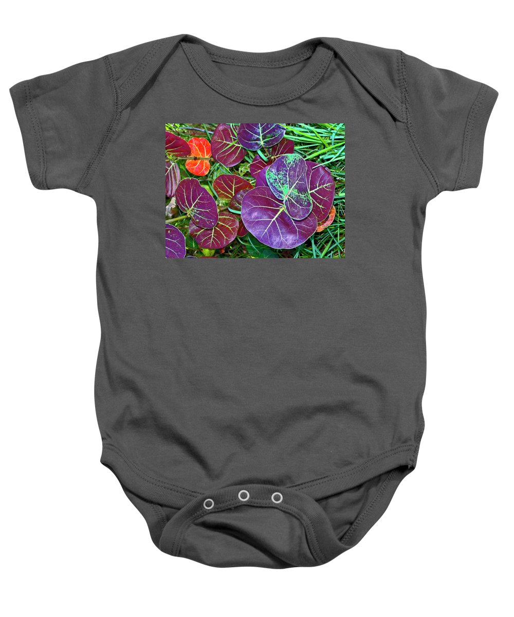 Large Maroon Leaves Baby Onesie featuring the photograph Sea Grape by Sally Weigand