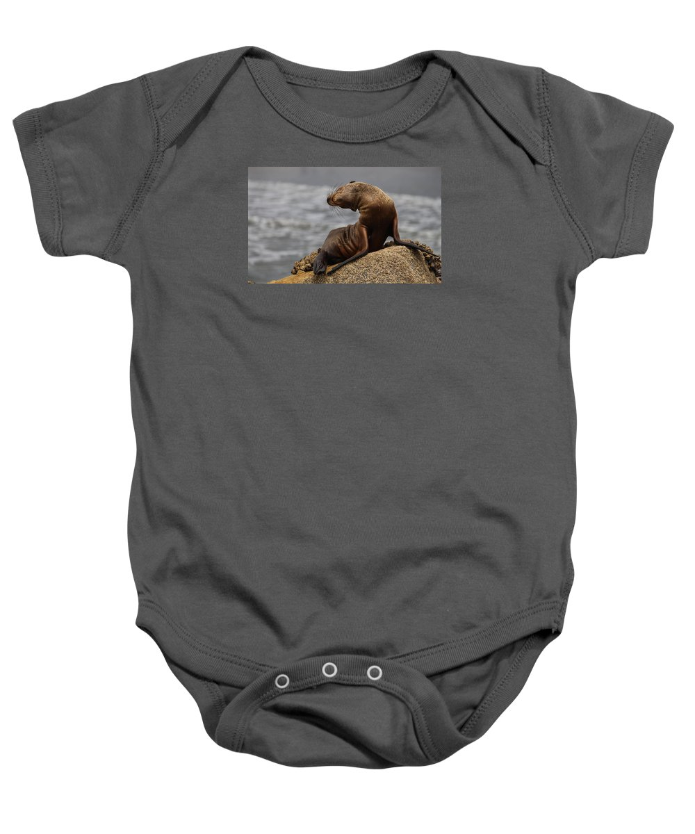 Sea Lion Baby Onesie featuring the photograph Sea Lion Pup by Brandon Cunnigham