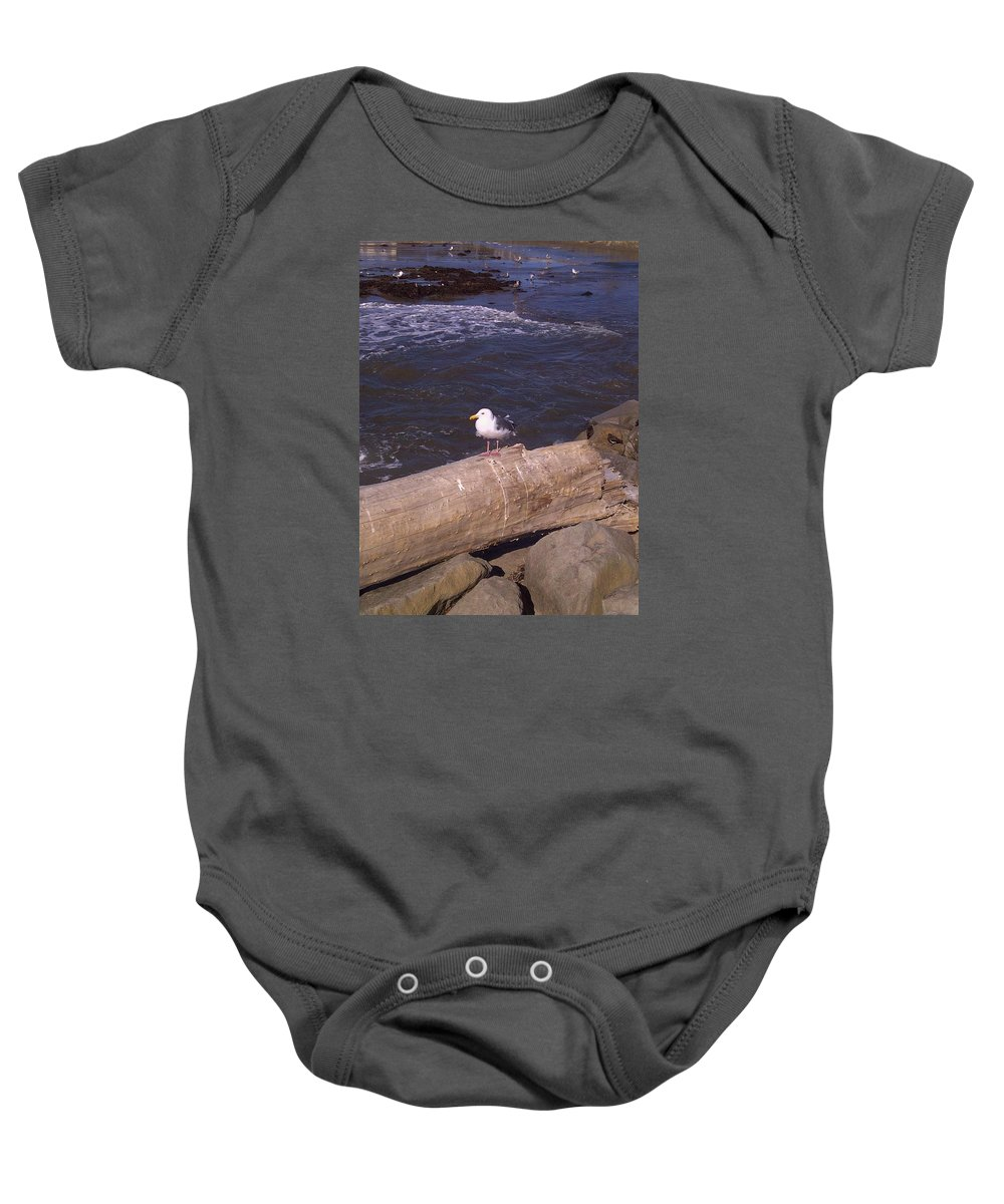 Seagull Baby Onesie featuring the photograph King Of The Seagulls by Misti Algeo