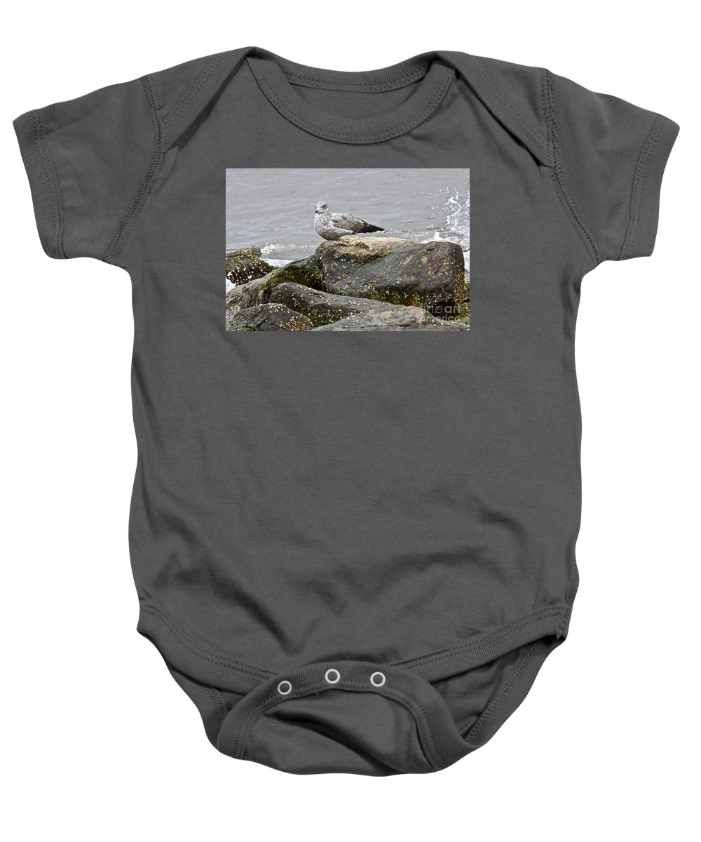 Animal Behavior Baby Onesie featuring the photograph Seagull Sitting On Jetty by Jeramey Lende