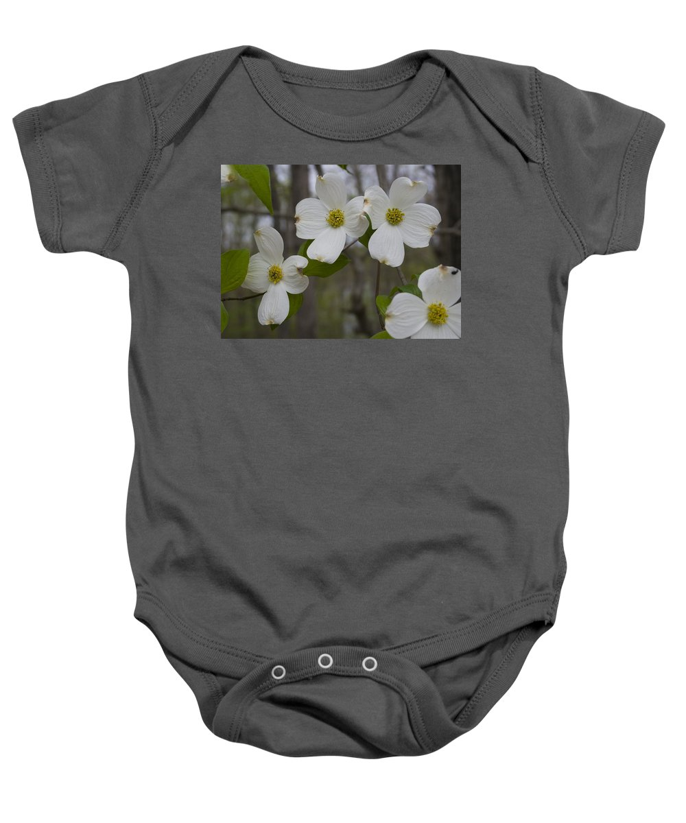 Flower Baby Onesie featuring the photograph Season Of Dogwood by Andrei Shliakhau