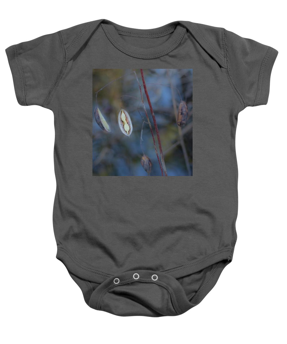 Seeds Baby Onesie featuring the photograph Seeds In A Pod Dark by By Way of Karma